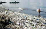 Con người đang hủy diệt các đại dương