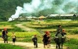 Quyết tâm triển khai thành công mô hình nông thôn mới