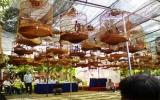 Trên 150 nghệ nhân tham dự Hội thi chim chích chòe lửa hót lần thứ 2