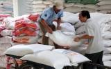 Đồng bằng sông Cửu Long xuất 4,1 triệu tấn gạo