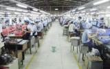 Phát triển tổ chức Đảng trong doanh nghiệp ngoài quốc doanh: Điểm sáng Thuận An