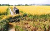 Câu lạc bộ 26 (Lai Uyên, Bến Cát): Hiệu quả từ việc tuyên truyền pháp luật cho nông dân