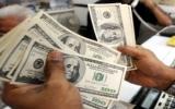 Cá nhân ra nước ngoài được mua tối đa 1.000USD