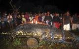 Bắt sống được cá sấu nặng hơn 1 tấn