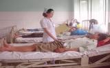 Bệnh sốt xuất huyết ở người lớn ngày càng gia tăng