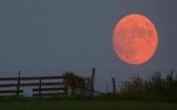 Lý giải trăng Trung thu to và đỏ hơn