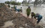 Vỡ nhiều tuyến đê ở Đồng Tháp, An Giang