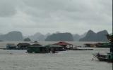Bão số 5 tàn phá Quảng Ninh