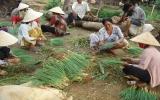 Tân Uyên: Hướng đến giảm nghèo bền vững