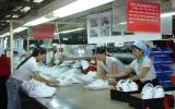 EU thực hiện chương trình giám sát giày mũ da xuất khẩu:  Thách thức mới cho ngành giày da Việt Nam