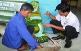 Xã An Lập (Dầu Tiếng):   Thực hiện tốt công tác xóa đói giảm nghèo