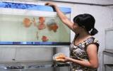 Mạnh dạn với mô hình nuôi cá dĩa