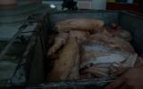 """Phát hiện gần 200kg thịt """"bẩn"""""""