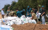 Hơn 100 dân quân, thanh niên tình nguyện khắc phục đê bao bị vỡ
