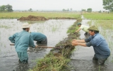 Hội Nông dân huyện Bến Cát: Đưa kiến thức pháp luật đến với nông dân