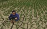 Năm 2011 lập kỷ lục về nóng và mưa trong lịch sử