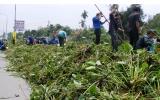 TX.Thuận An: Tích cực vận động nhân dân bảo vệ môi trường