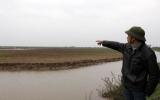 Hải Phòng dừng thu hồi, giao đất nuôi trồng thủy sản