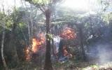 Vườn quốc gia Hoàng Liên có thêm điểm cháy mới