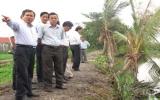 Phó Chủ tịch UBND tỉnh Trần Văn Nam kiểm tra các công trình đê bao