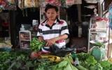 Câu lạc bộ trồng cây chuối lấy lá thay túi nylon:  Vì một môi trường xanh