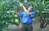 Xã Bạch Đằng (Tân Uyên): Nông dân tích cực xây dựng nông thôn mới