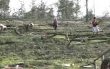 Kỷ luật Bí thư, Chủ tịch xã tự ý cắt đất rừng cho doanh nghiệp nuôi tôm