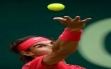 Nadal thua sớm, Federer đi tiếp vào bán kết