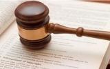 Năm luật và pháp lệnh có hiệu lực thi hành từ 1-7