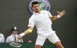 Wimbledon 2012: Djokovic gặp Federer tại bán kết