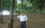 """Nông dân Lương Văn Song: Tỷ phú """"cây - con"""""""