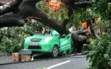 Bão số 5 đã gây những thiệt hại đầu tiên cho nhiều địa phương