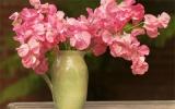 Hoa tươi phong cách cho nhà đẹp
