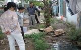 Chiến dịch tổng vệ sinh môi trường, phòng chống dịch bệnh sốt xuất huyết và tay chân miệng: Nhiều hộ dân vẫn còn thờ ơ