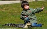 Bé trai 2 tuổi làm người huấn luyện trăn