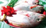 Thơm ngọt cá bính đàng