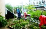 Đồng bằng Sông Cửu Long: Nỗ lực phòng chống ngập úng