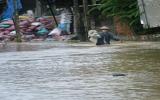 Na Uy hỗ trợ 1,8 triệu USD giúp Việt Nam giảm thiểu rủi ro thảm họa