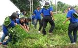 Bảo vệ môi trường ở Phú Giáo:  Kết quả bước đầu
