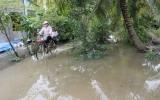 Triều cường trên sông Sài Gòn, hồ thủy điện Trị An và Srok Phu Miêng xả tràn