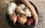 Các thực phẩm hàng đầu chống lại bệnh tật