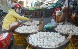 Nguồn cung bảo đảm, giá trứng gia cầm vẫn tăng!