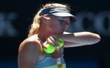 Bán kết Australian Open: Maria Sharapova thua sốc
