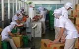 Công ty TNHH New Choice Foods:  Chăm lo tốt đời sống người lao động