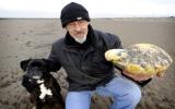 Trở thành triệu phú nhờ chất thải cá voi