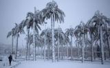 Thế giới lo âu về thời tiết