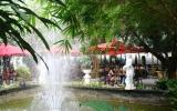 Cà phê Villa (p.Phú Lợi, TP.Thủ Dầu Một): Không gian xanh giữa sân vườn biệt thự