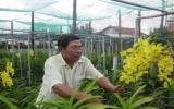 Câu lạc bộ Trang trại hoa lan Bình Dương:  Xây dựng các mô hình ứng dụng công nghệ mới