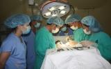 Bệnh viện Đa khoa Vạn Phúc thực hiện phẫu thuật thoát vị đĩa đệm