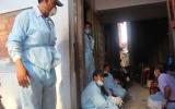 Ninh Thuận công bố dịch cúm H5N1 trên đàn yến nuôi